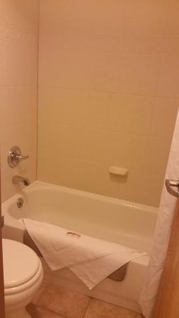 Quality Inn & Suites: Bathroom (a bit tight)