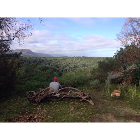 Wild Spirit Lodge and Backpackers