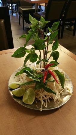 """Thuan Kieu: """"Palm Tree"""" -- side dish for pho"""
