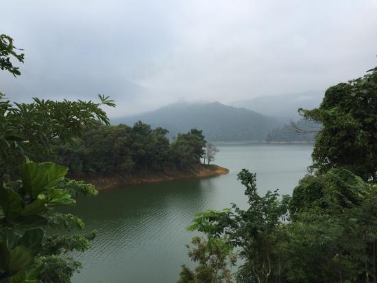 Bilde fra Belum Rainforest Resort