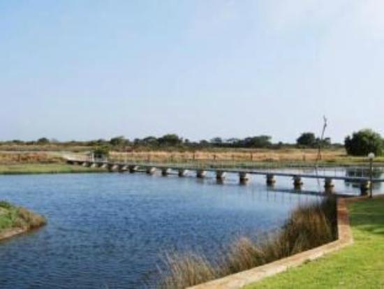 Martin Fields Beach Retreat: Bridge for walk to beach