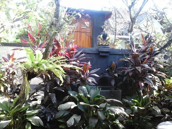 Dana Guesthouse: courtyard