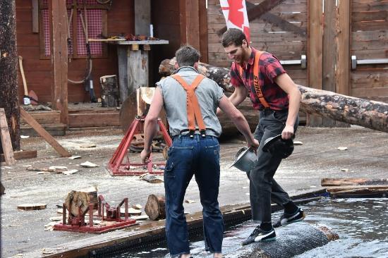 Lumberjack show picture of great alaskan lumberjack show ketchikan