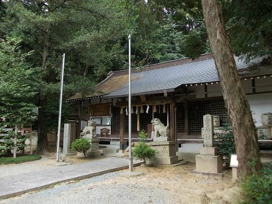 兵庫県の最強パワースポット15選|夫婦和合・縁結びにおすすめ