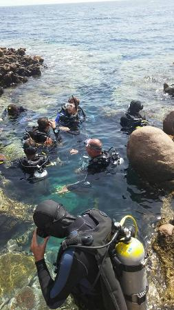 Sinai Divers Dahab: in the water