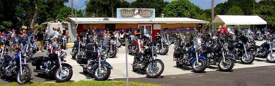 Palmetto, FL: biker n rocker parties
