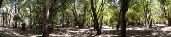 Camooweal, Australia: The Grove