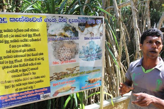 Bentota, Sri Lanka: Information board