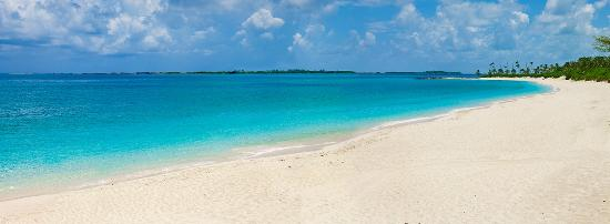 Paradise Island Beach Club Updated 2018 Prices Reviews Photos Bahamas Resort Tripadvisor