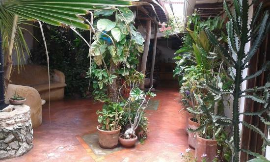 El Cardon, Венесуэла: Area social, integrando la naturaleza a los espacios!!