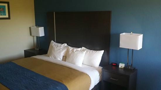 Comfort Inn Cleveland Airport: King Bed