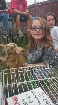 Butterfield Acres Farm: Petting Zoo comes to you!!