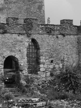 Clonony Castle: Main Gate