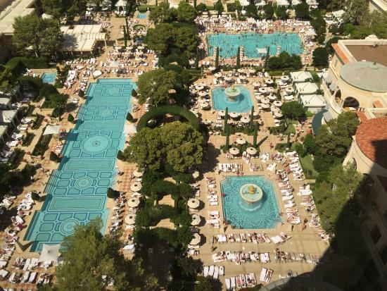 Some Of The Pools Picture Of Bellagio Las Vegas Las Vegas Tripadvisor