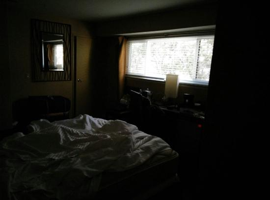 Enjoy a small, dark and dirty room. - Picture of Mariposa Inn and ...