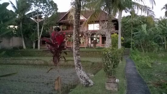 Melati Cottages: Área externa do Hotel, indo em direção aos quartos.