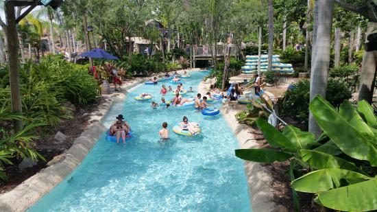 Disney Typhoon Lagoon Water Parks Postcard New