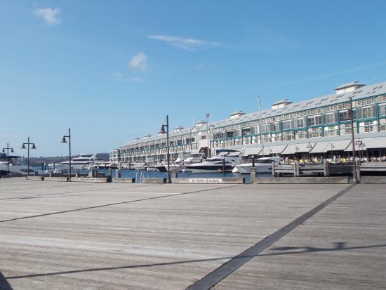 Woolloomooloo Wharf: Hotel, bars and restaurants - hidden gem