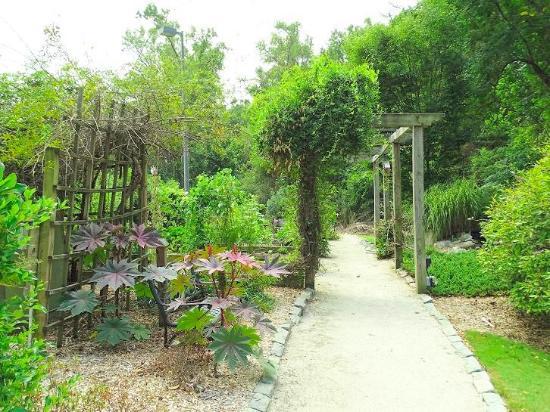 Wilson Botanical Gardens: adult garden