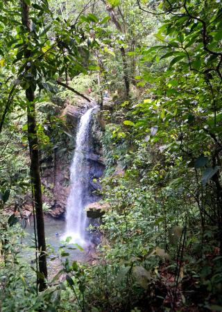 Blanchisseuse, Trinidad: Avocat Waterfall