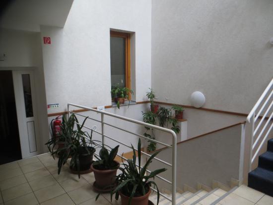 Hotel Papillon : the atrium