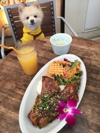 Dexee Diner & Cafe Kisarazu