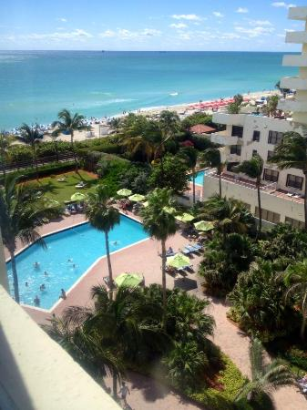miami beach ocean front picture of holiday inn miami. Black Bedroom Furniture Sets. Home Design Ideas