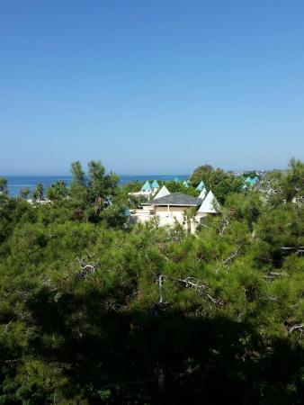 Turquoise Resort Hotel & Spa: photo3.jpg