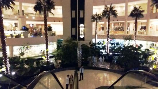 Radisson Blu Suites Gurgaon : Atrium