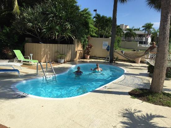 Community Pool Picture Of Turtle Beach Resort Siesta Key