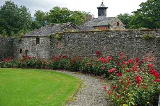 Ballymascanlon House Hotel: Beautiful flowers and the carriage house