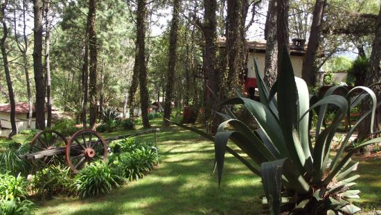 Hotel Sierra Paraiso: SIERRA PARAÍSO JARDINES