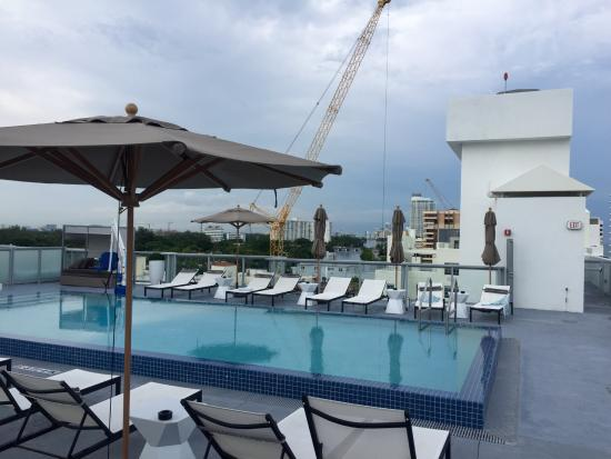 rooftop pool picture of ac hotel by marriott miami beach miami beach tripadvisor. Black Bedroom Furniture Sets. Home Design Ideas