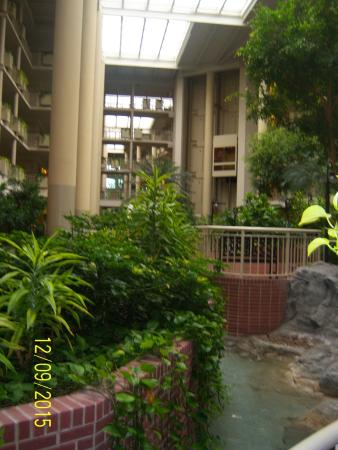 Embassy Suites by Hilton Parsippany: Paque interior