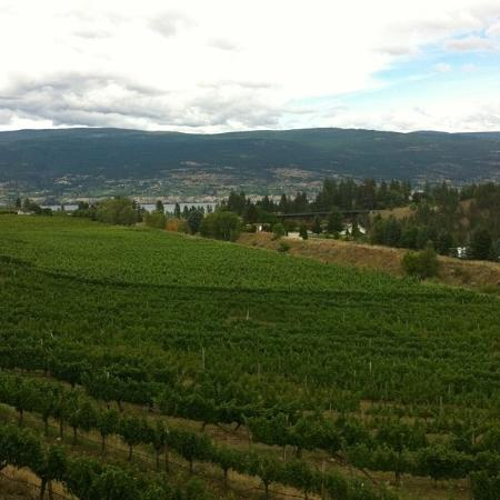 Summerland, Kanada: View from the winery