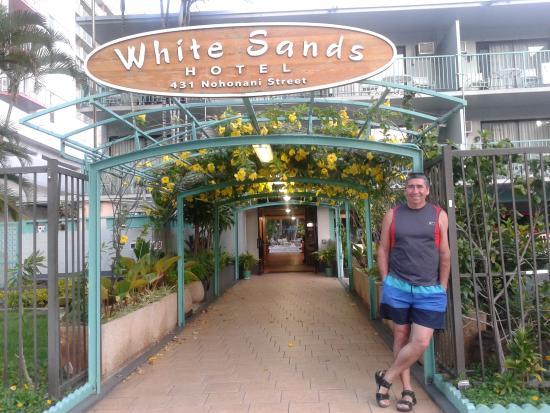 White Sands Hotel Honolulu Reviews