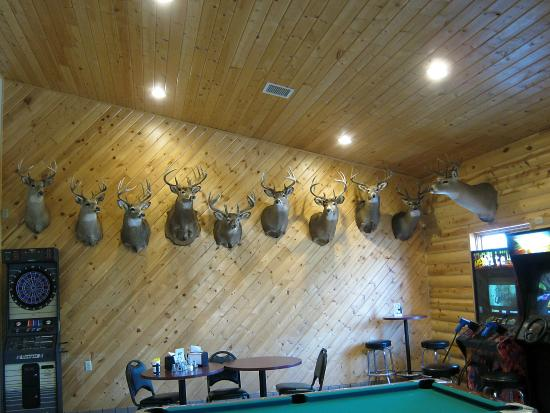 Bagley, MN: Game Room-Games and Big Game