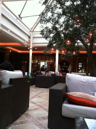 Seating area near coffeeshop/bar, spa facilities