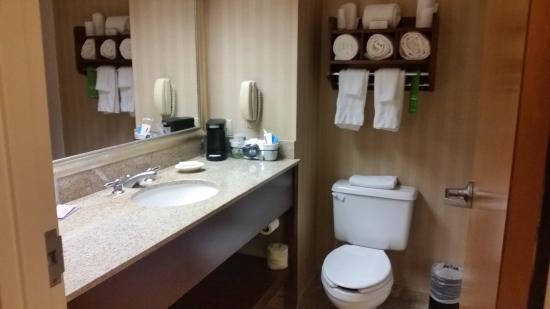 Hampton Inn Louisville-North/Clarksville : bathroom