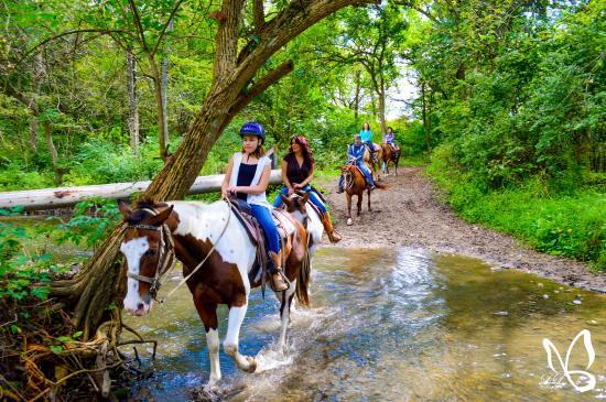 Horseback Riding Picture Of Cedar Creek Ranch Cedar