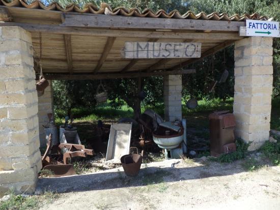 Museo foto di il giardino del sole carlentini tripadvisor - Il giardino del sole ...