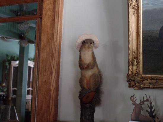 Deer Head Inn: this lil fella greeted us when we arrived