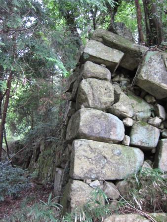 Kannonji Castle Ruin