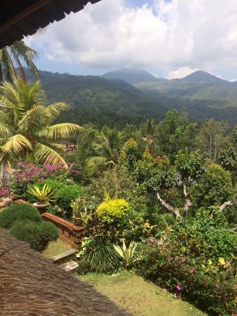 Lumbung Bali Cottages and Spa: photo1.jpg