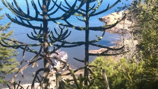 Cabanas Costa Bonita: mi vista al Lago