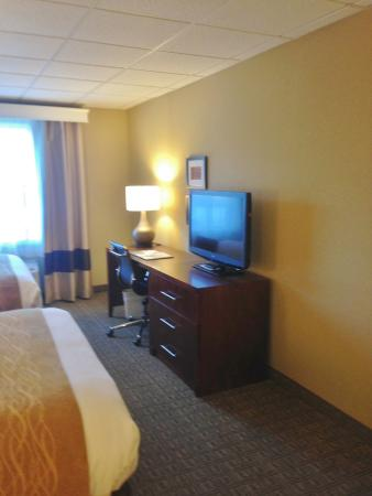 Comfort Inn and Suites Colonial: Dresser and TV