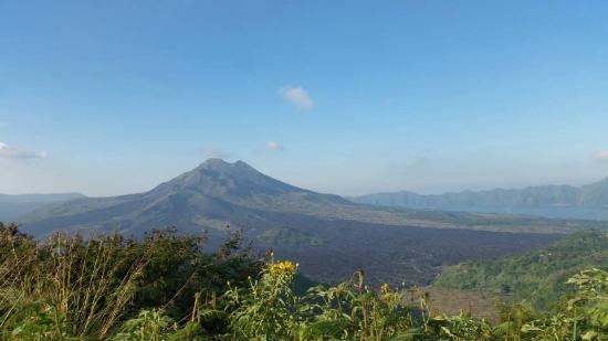 Hola Bali Tour