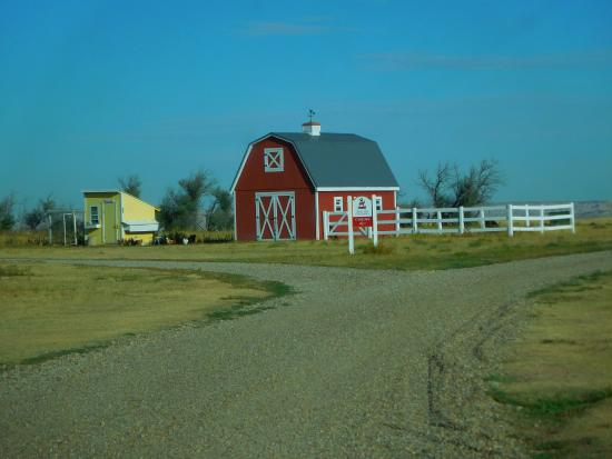 Circle View Guest Ranch : Chicken coop and barn