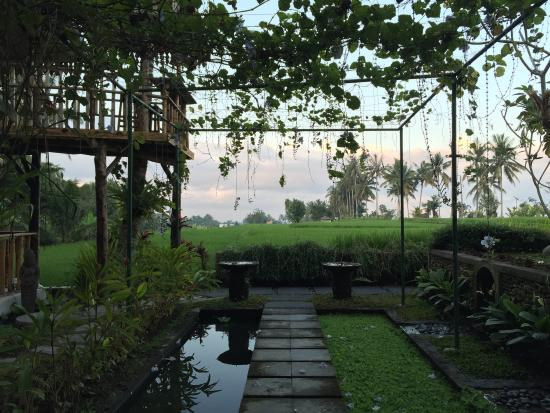 Rice Paddy Bungalows