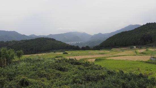 Sakamoto Tanada